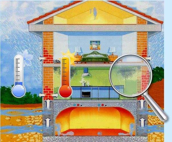 Rimedi e interventi su come gestire il problema della - Togliere umidita in casa ...