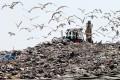 AMBIENTE: Istat, un terzo dei rifiuti finisce ancora nelle discariche